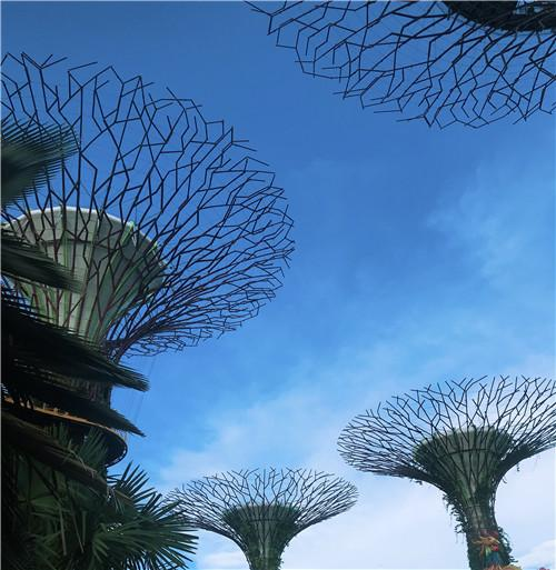新加坡是一个怎样的国家?