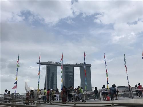 来新加坡留学必选的热门商科专业盘点