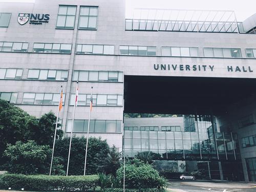新加坡高等教育全解析,理工学院、公立大学、私立大学