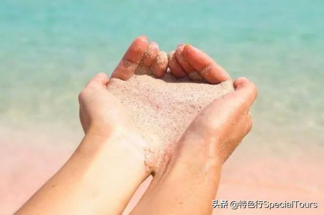 私藏的小众海岛,科莫多应该这样玩