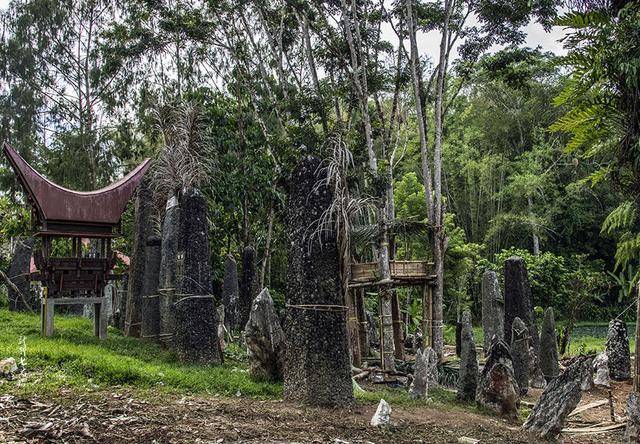 「印尼」深入苏拉维西腹地,初探托拉查文化