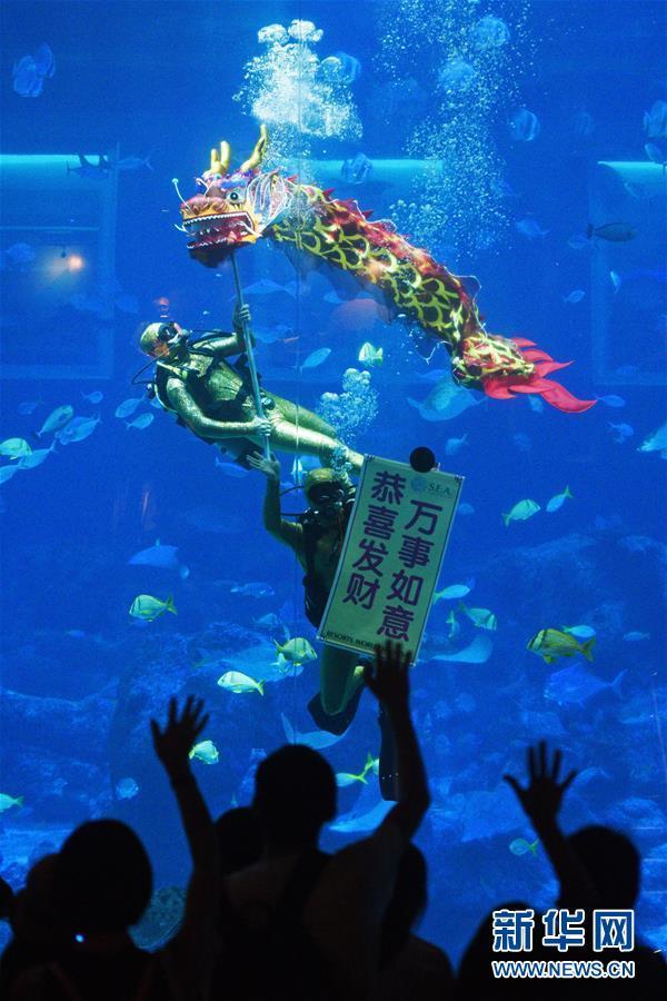 新加坡:水下舞龙庆新年
