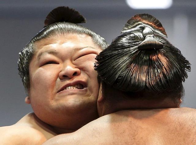 为何日本美女喜欢嫁给油腻的相扑选手?除了有钱,这些感受很重要
