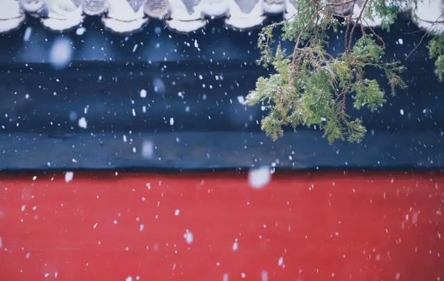 北京暴雪!太美了吧