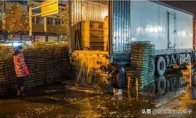 武汉华南海鲜市场藏大量新型肺炎病毒!求你们,别吃野味了...