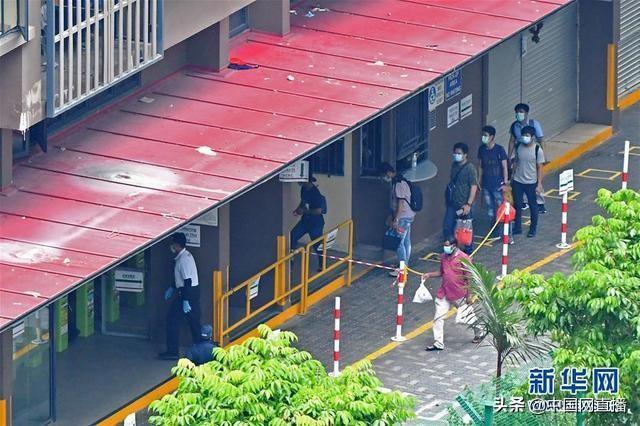 新加坡疫情升级:境外输入降至个位,本土非关联病例猛增