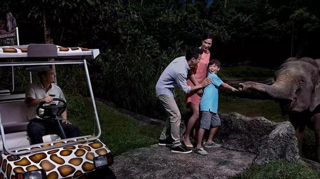 不用做攻略,新加坡4条线路,全家人都满意