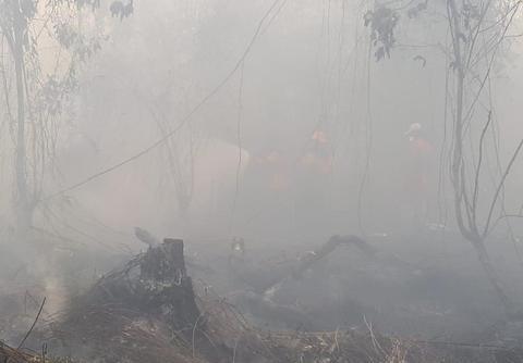 印尼烧芭引燃大火,周边部分国家游客取消行程