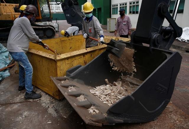 态度很坚决!新加坡捣毁价值近九千万人民币的象牙,阻止非法贸易