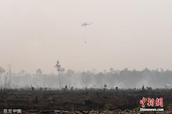 印尼遭林火烟霾干旱夹攻 农作物欠收农民叫苦连天