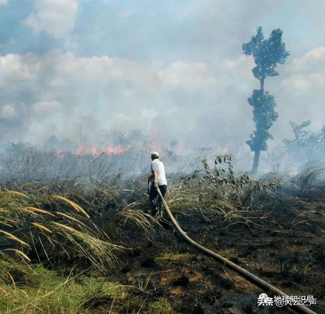 印尼靠什么养活本国2亿6800万人?| 地球知识局