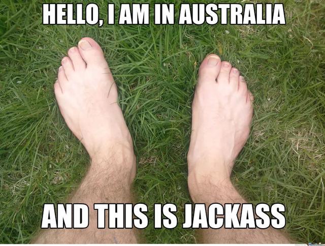 澳洲人的日常,比抢厕纸好玩多了