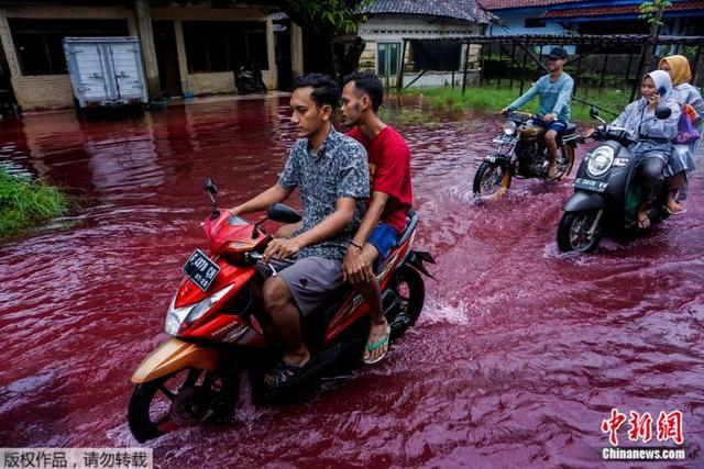 """洪水变""""红水""""?印尼蜡染厂遭水淹 意外成打卡点(图)"""