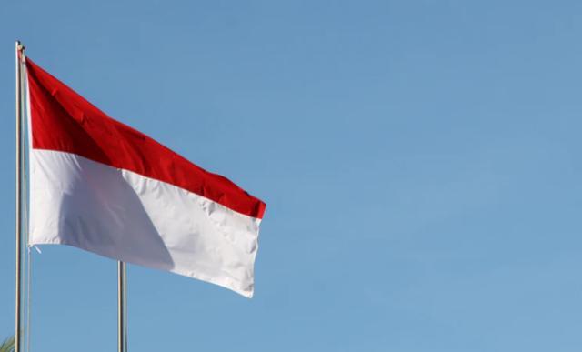"""印尼财政部长:至少需要一年时间才能实现对新冠的""""群体免疫"""""""