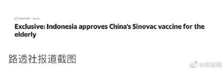 外媒:内部信件显示,印尼政府已批准给老年人接种中国新冠疫苗