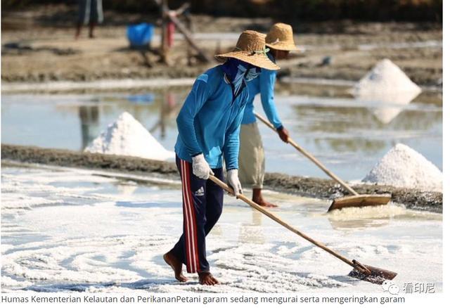 海洋大国的印尼每年进口多少食盐