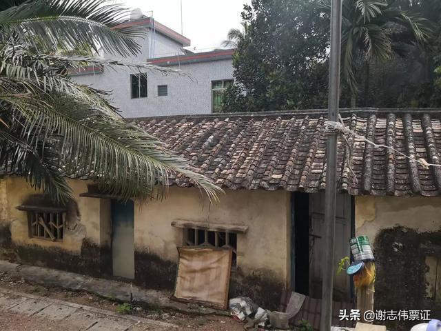 跟我一起游海南(135)印尼村旧貌变新颜