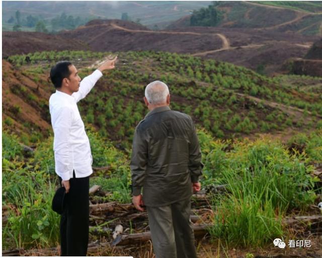 2024年印尼将完成新首都建设目标