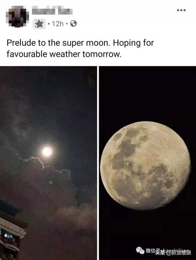 """超梦幻!新加坡明天迎来罕见的""""粉红月亮"""""""