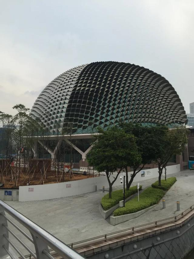 新加坡政府中小学留学生如何迅速适应校园生活?