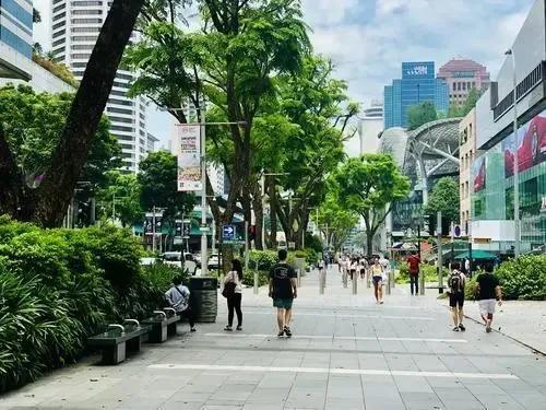 """新加坡24个冷知识,你知道几个?带你了解""""开放""""的新加坡"""