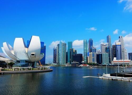 在新加坡成立一家私人有限公司后续维护需要什么吗