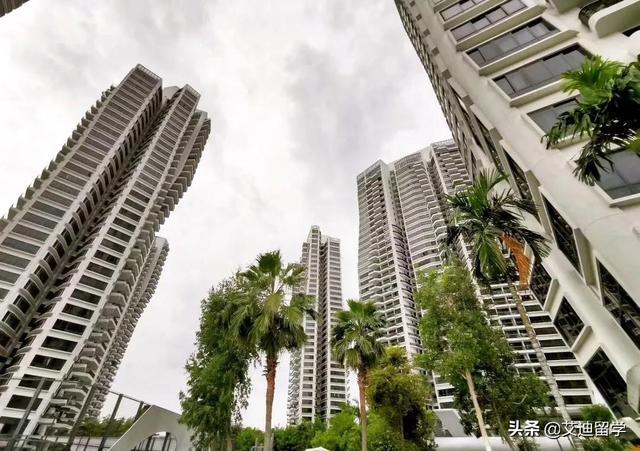 新加坡留学生租房最强攻略,再也不用担心被黑中介坑啦