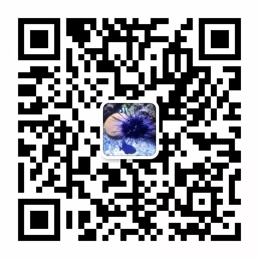 56541580a2ebe667b361101483a37002.jpeg